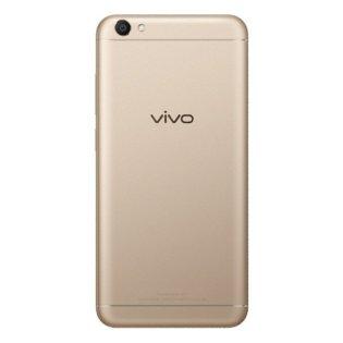 v5-back-800x800